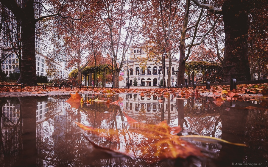 Frankfurter Herbst